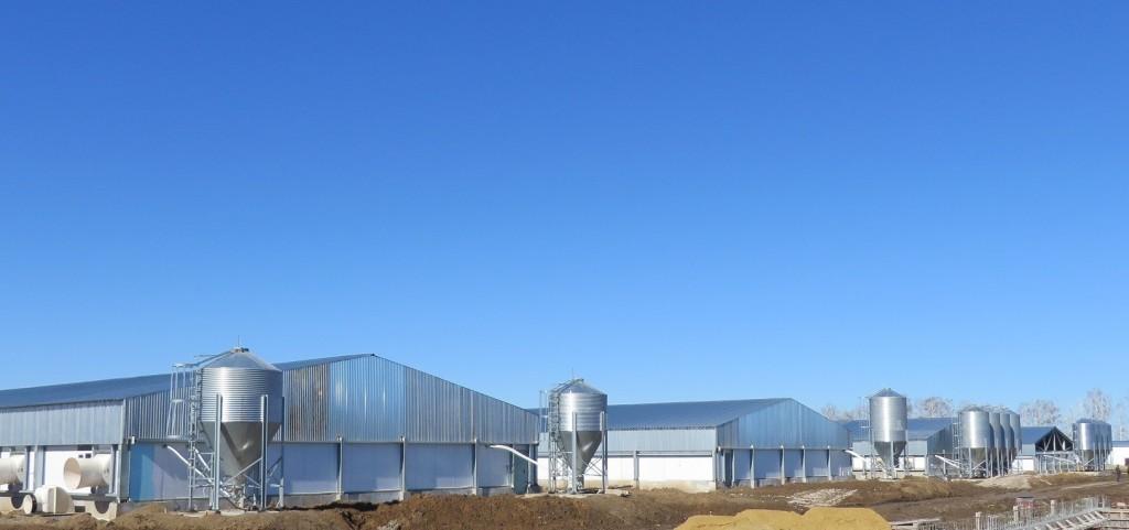 Сельскохозяйственные здания и фермы
